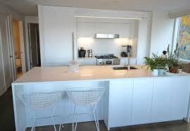 interior kitchen cabinet color ideas modern chic white designing