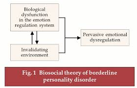 dialectical behaviour therapy for borderline personality disorder