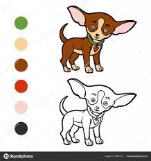 Livre de coloriage races de chien  Chihuahua  Image vectorielle