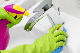 best home cleaning services in annandale va next day cleaning