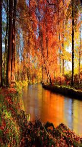 Fall Autumn by Best 25 Fall Nature Photography Ideas On Pinterest Autumn