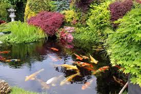 Japanese Style Garden by 10 Best Garden Pond Building Practices