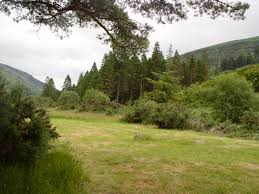 Ballyhoura Forest Luxury Homes by Hostels Near Forests In Ireland An Oige