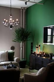 green accent walls home design ideas