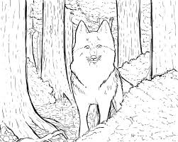 wolf forest coloring page by mentallymanic on deviantart