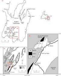 Newfoundland Canada Map by Chapter 42 The Deep Marine Glaciogenic Gaskiers Formation