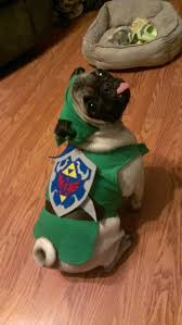 link halloween puppy halloween link pug costume legend of zelda saveyourheart1197 u2022