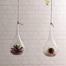 amazon com pack of 3 glass hanging planter hanging air plant