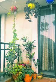 hanging baskets in my small balcony garden balcony decor mini