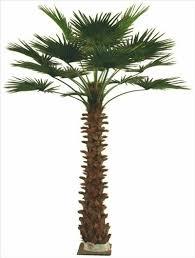 artificial palm tree 6004 hongsheng china manufacturer