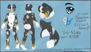 buy a australian shepherd aussie shep premade design for sale as fursuit by woozles