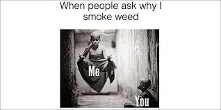 Memes About Smoking Weed - the 25 best marijuana memes on the internet