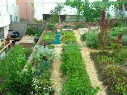 Urban Gardens San Francisco - little city gardens u2013 cherry tomato sized urban farm in san