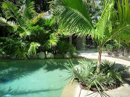 49 best tropical landscaping images on pinterest tropical