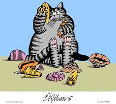 best 25 kliban cat ideas on cat illustrations black