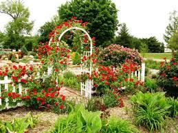 garden rose garden plans