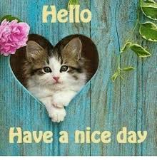 Have A Nice Day Meme - ello have a nice day meme on me me