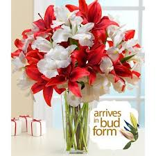 Free Vase 135 Best Flowers And Bouquets Images On Pinterest