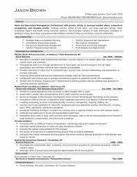 resumes resume cv cover letter sample real estate budget template