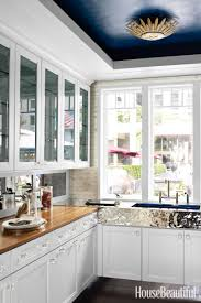 Paint Kitchen Ideas Painted Kitchen Ceiling Ideas Roselawnlutheran