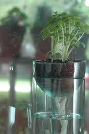 create your indoor herb garden today u2013 sortra