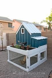 chicken coop plans insteading