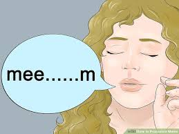 Meme Definition Pronunciation - how to pronounce meme 4 steps with pictures wikihow