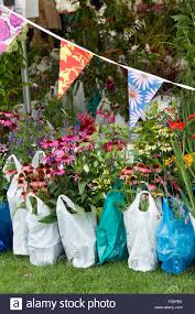 Wisley Gardens Craft Fair - bought flowers in plastic bags waiting to be collected at rhs