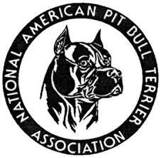 l american pitbull terrier a p b t sinnoma coast kennel
