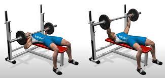 Bench Press Assistance Work Flat Barbell Bench Press U2022 Bodybuilding Wizard