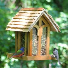 small wooden house bird feeder decorate your backyard with bird