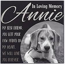 Good Backyard Pets Amazon Com Small Standard Pet Grave Marker Pet Headstones