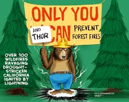 Only You Can Prevent Forest Fires Meme - index of web images 2 new years 2016