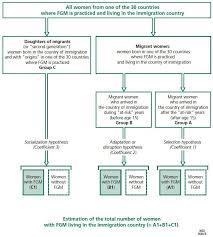 bureau avec ag e int r mutilation overview and current knowledge cairn