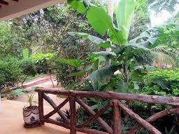 atii garden bungalows nungwi tanzania booking com