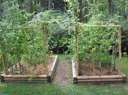 gardening ideas for small gardens gardenabc com