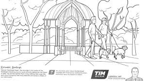 colouring book kill tim wilson u0027s career
