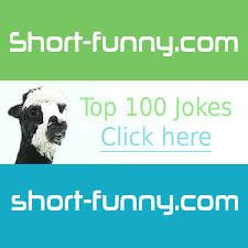 cat jokes hummor short funny com