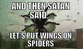 Meme Spider - and then satan said let s out wings on spiders know your meme