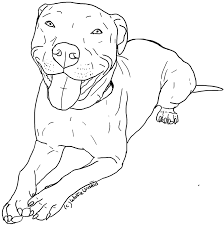 pitbull dog coloring page free download
