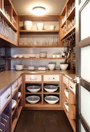 modern dish racks and built in cabinet dish dryers design ideas