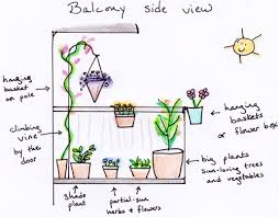 how to design your small container garden small notebook