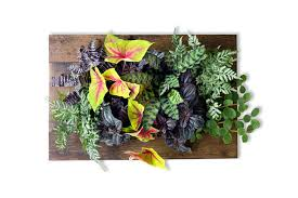 create a gorgeous vertical garden indoors with an urban zeal