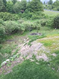credit river retaining wall project
