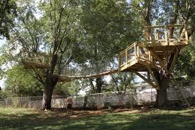 backyard treehouse ideas best 25 tree house beds ideas on