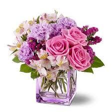 free flower delivery die besten 25 cheap flowers delivered ideen auf