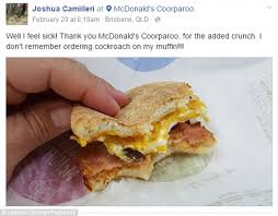 roaches in my bathroom brisbane man finds a cockroach in his mcdonald s mcmuffin daily