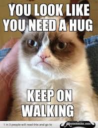 Give Me A Hug Meme - grumpy cat you look like you need a hug meme collection