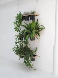 indoor plant display 22 indoor plant displays that won t spoil interiors shelterness