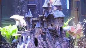aquarium with castle